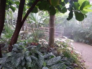 botanical path