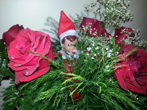 Today our Elf on the Shelf is reminding us to stop and smell the roses!