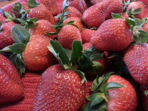 Closeup of Strawberries