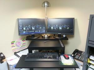 Dual Computer monitors