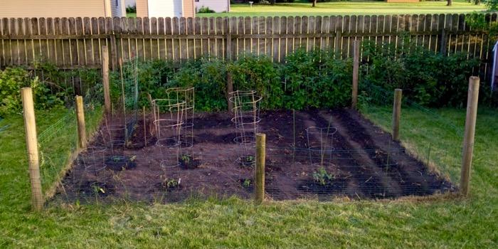 2016 Family Garden