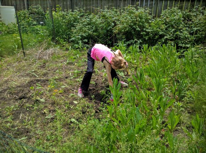 Girl weeding a garden