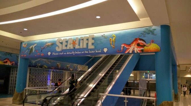 Review: Sea Life Minnesota Aquarium At The Mall Of America