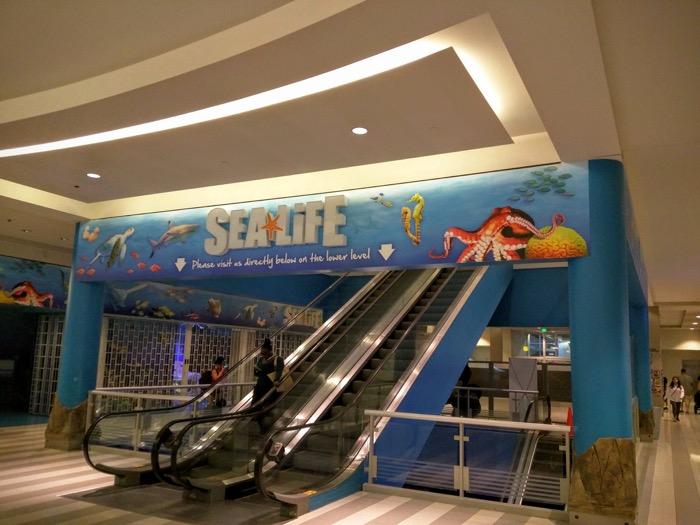 Sea Life MOA escalators