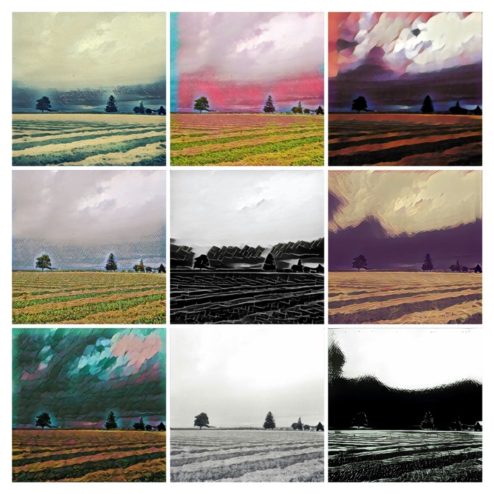 Prisma Landscape Collage 1