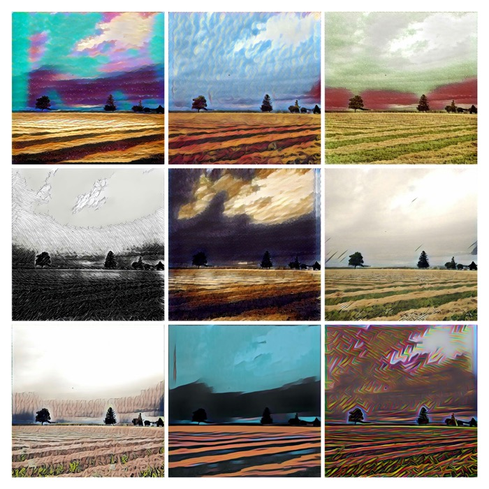 Prisma Landscape Collage 2